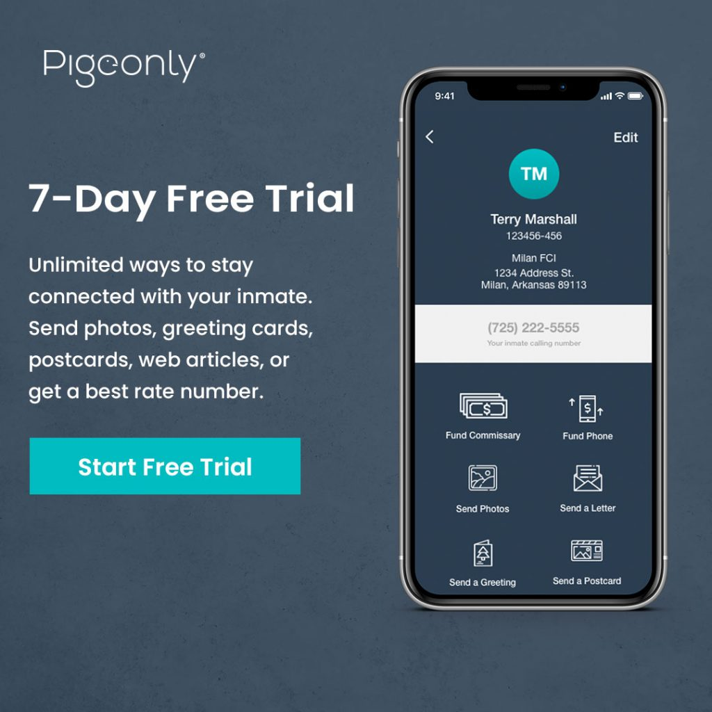 pigeonly free trial